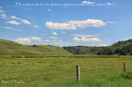 He Leads Us To Green Pastures